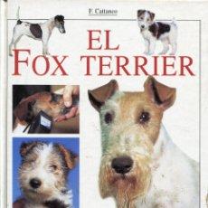 Libros de segunda mano: EL FOX-TERRIER --F.CATTANEO. Lote 45370843