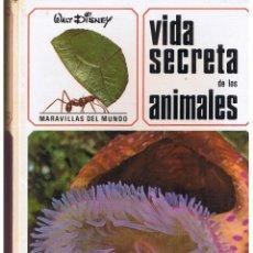 Libros de segunda mano: VIDA SECRETA DE LOS ANIMALES. MINISTERIO DE EDUCACIÓN Y CIENCIA. GAISA 1969. (P/B73). Lote 45409651