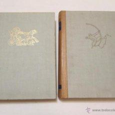 Libros de segunda mano: HISTORIA GENERAL DEL ARTE - VARIOS AUTORES - 1958 (2 VOL.). Lote 45455236