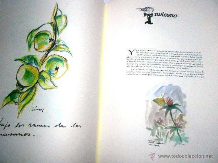 Libros de segunda mano: MOLINOS DE AGUA Y MAQUILA POR MANUEL GARCIA LINARES 1988, prol. Julio Caro Baroja, Dedicatoria autor - Foto 4 - 46693930
