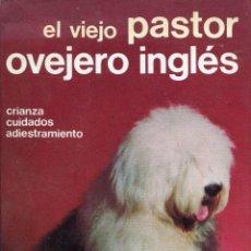 Libros de segunda mano: EL VIEJO PASTOR OVEJERO INGLES --CRIANZA CUIDADOS ADIESTRAMIENTO. Lote 47079908