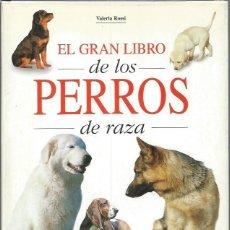 Libros de segunda mano: EL GRAN LIBRO DE LOS PERROS DE CAZA, VALERIA ROSSI, ED. DE VECCHI, BARCELONA 2000. Lote 47091084