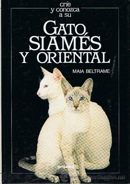 GATO SIAMÉS Y ORIENTAL MAIA BELTRAME (Libros de Segunda Mano - Ciencias, Manuales y Oficios - Otros)