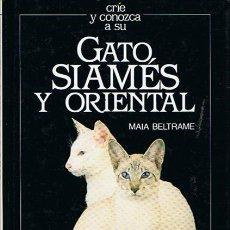 Libros de segunda mano: GATO SIAMÉS Y ORIENTAL MAIA BELTRAME. Lote 47129684