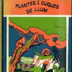 Libros de segunda mano: SALVADOR PERARNAU : PLANTES I CUQUES DE LLUM - POEMES PER A INFANTS (1966) CATALÁN -ILUSTRA JUNCEDA. Lote 48403550