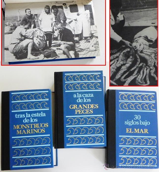 LOTE 30 SIGLOS BAJO EL MAR / CAZA GRANDES PECES MONSTRUOS MARINOS LIBROS ARQUEOLOGÍA BIOLOGÍA LIBRO (Libros de Segunda Mano - Ciencias, Manuales y Oficios - Otros)