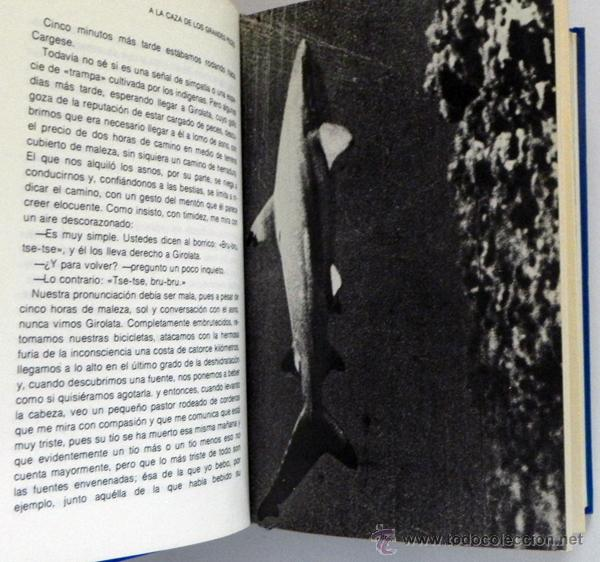 Libros de segunda mano: LOTE 30 SIGLOS BAJO EL MAR / CAZA GRANDES PECES MONSTRUOS MARINOS LIBROS ARQUEOLOGÍA BIOLOGÍA LIBRO - Foto 9 - 50055349