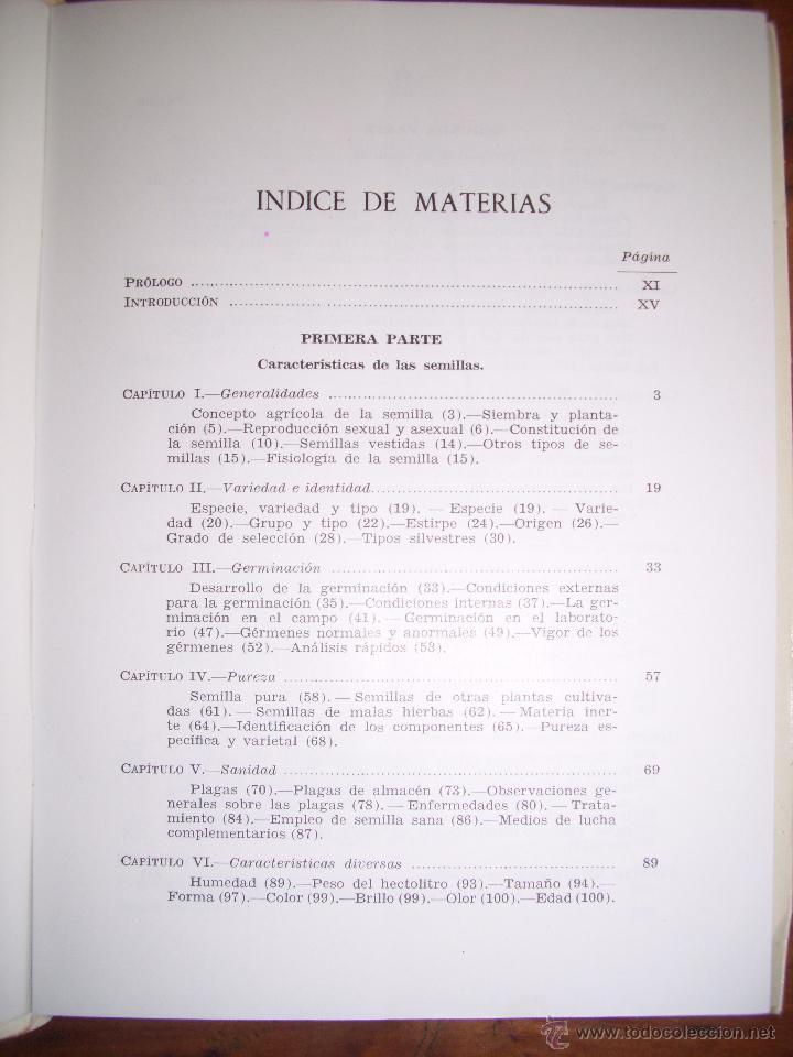 Libros de segunda mano: BESNIER ROMERO, Fernando. Semillas - Foto 2 - 40887703