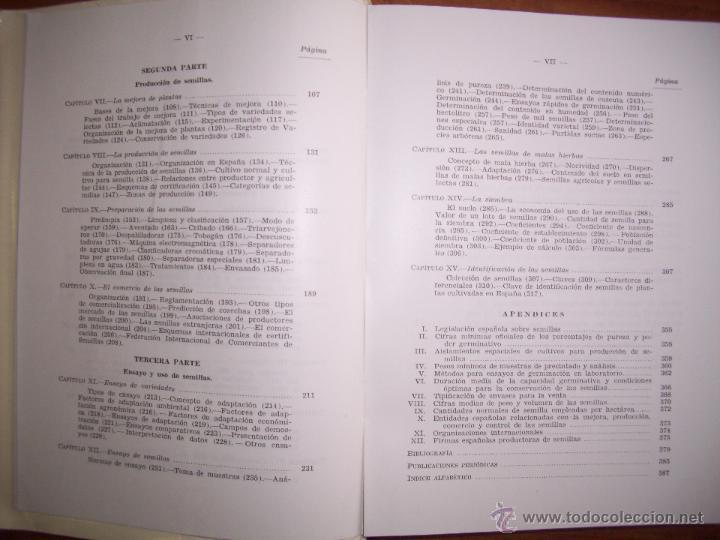 Libros de segunda mano: BESNIER ROMERO, Fernando. Semillas - Foto 3 - 40887703