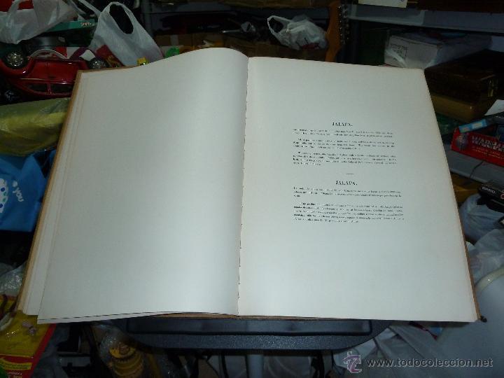Libros de segunda mano: MEXICO ILUSTRADO POR JOHN PHILLIPS EDITORIAL DEL VALLE DE MEXICO 1972 - Foto 18 - 50230966