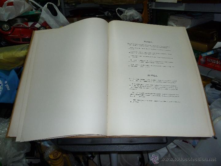 Libros de segunda mano: MEXICO ILUSTRADO POR JOHN PHILLIPS EDITORIAL DEL VALLE DE MEXICO 1972 - Foto 24 - 50230966