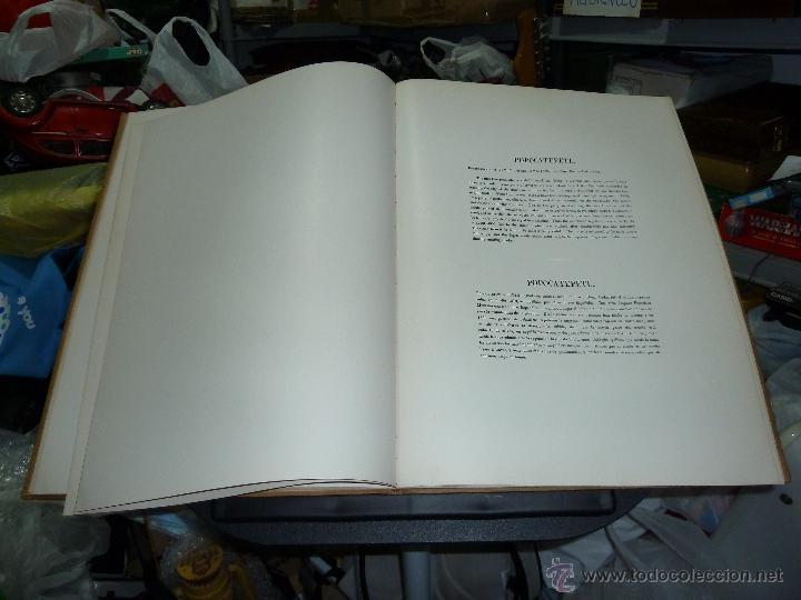 Libros de segunda mano: MEXICO ILUSTRADO POR JOHN PHILLIPS EDITORIAL DEL VALLE DE MEXICO 1972 - Foto 27 - 50230966