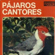 Libros de segunda mano: DOCUMENTAL COLOR TEIDE : PÁJAROS CANTORES - MUY ILUSTRADO, GRAN FORMATO. Lote 50318500