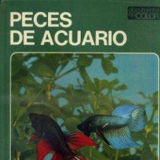 Libros de segunda mano: DOCUMENTAL COLOR TEIDE : PECES DE ACUARIO - MUY ILUSTRADO, GRAN FORMATO. Lote 50318520