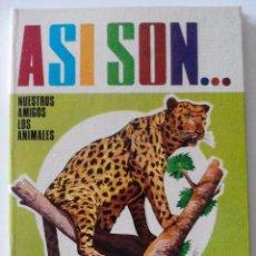 Libros de segunda mano: ASI SON...NUESTROS AMIGOS LOS ANIMALES, ELEFANTE, LEON, TIGRE, PANTERA, EDITORIAL ROMA, AÑOS 80. Lote 50488394