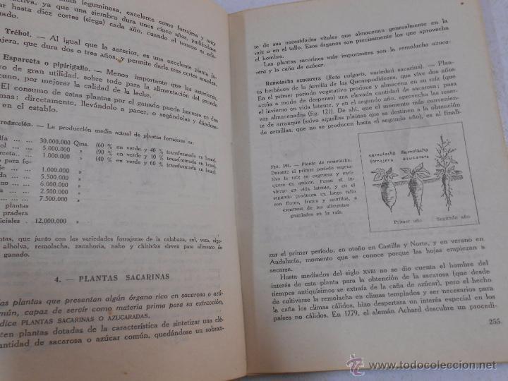 Libros de segunda mano: PRIMERAS MATERIAS (PRODUCTOS COMERCIALES NATURALES) - DOLADO, Juan Jose. TDK182 - Foto 2 - 50580944