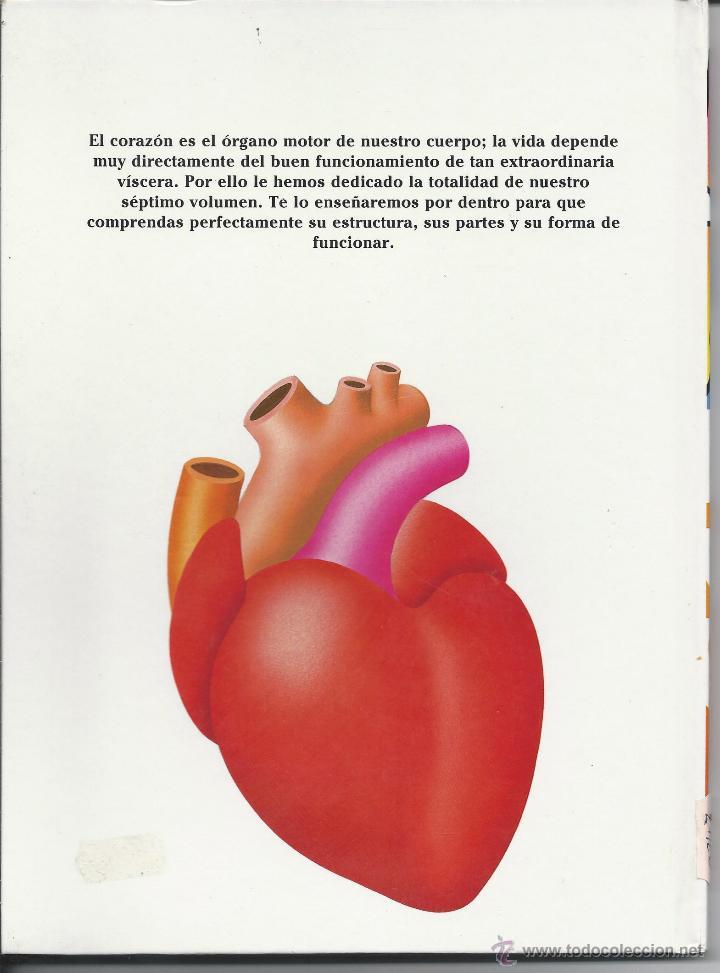 el corazón - el cuerpo humano. de planeta-agos - Comprar en ...