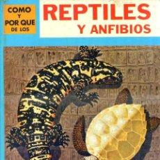Libros de segunda mano: MOLINO : CÓMO Y POR QUÉ DE LOS REPTILES Y ANFIBIOS (1970). Lote 104938674