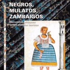 Libros de segunda mano: NEGROS, MULATOS, ZUMABAIGOS (BERTA ARES / A. STELLA, 2000). SIN USAR JAMÁS. Lote 51664198