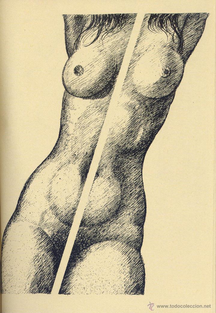 Libros de segunda mano: MÓN DE SUBIRACHS. Amb textos i poemes autors varis. l.lustracions, Josep Mª. Subirachs; EUMO 1984. - Foto 3 - 51999837