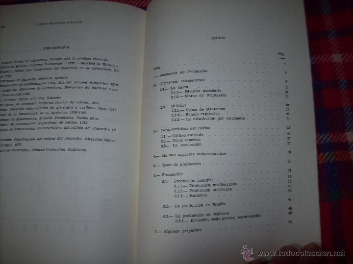 Libros de segunda mano: ALGUNOS ASPECTOS DE LA PRODUCCIÓN DE ALMENDRA EN MALLORCA.PEDRO QUINTANA.1981.ÚNICO EN TC!!!!!!!!!!! - Foto 14 - 52336686