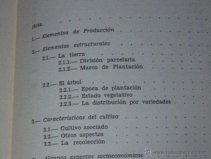 Libros de segunda mano: ALGUNOS ASPECTOS DE LA PRODUCCIÓN DE ALMENDRA EN MALLORCA.PEDRO QUINTANA.1981.ÚNICO EN TC!!!!!!!!!!! - Foto 15 - 52336686