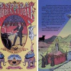 Libros de segunda mano: ESPAÑA ES SOBRENATURAL: MONDO BRUTTO. SPANISH BIZARRO CASPA CUTRE IBÉRICO. Lote 92999358