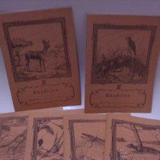 Libros de segunda mano: CUADERNOS DE ESCRIBIR - SAM - CUADRICULA FRANCESA - CUADERNO CON ANIMAL PORTADA. Lote 53773583