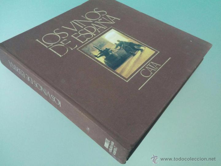 LOS VINOS DE ESPAÑA - CATA - EDICIONES CASTELL - 1984 - 27 X 26 - 342 P - CON ILUSTRACIONES A COLOR (Libros de Segunda Mano - Ciencias, Manuales y Oficios - Otros)