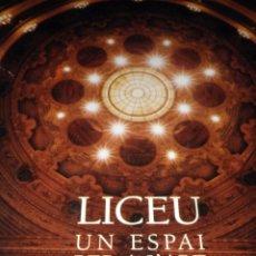 Libros de segunda mano: LICEU UN ESPAI PER A L'ART LICEO UN ESPACIO PARA EL ARTE LUMWERG. Lote 54424607