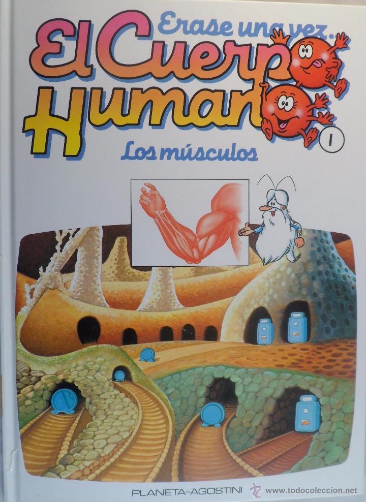 ÉRASE UNA VEZ EL CUERPO HUMANO. Nº 1. LOS MÚSCULOS. (Libros de Segunda Mano - Literatura Infantil y Juvenil - Otros)