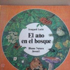 Libros de segunda mano: UN AÑO EN EL BOSQUE. Lote 54906794