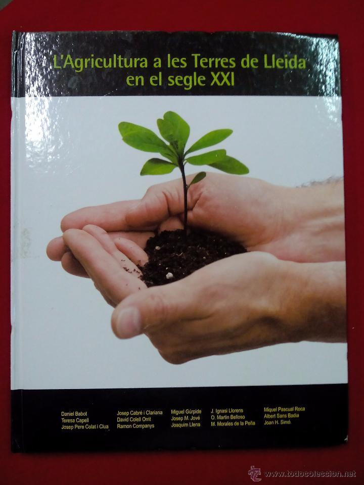 L´AGRICULTURA A LES TERRES DE LLEIDA EN EL SEGLE XXI. CATALAN (Libros de Segunda Mano - Ciencias, Manuales y Oficios - Otros)