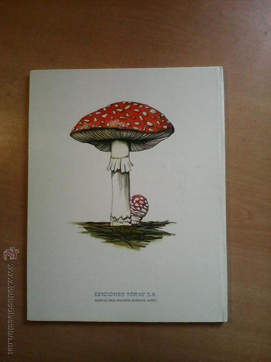 Libros de segunda mano: El niño quiere saber explorando un bosque Malcolm Saville ed. Toray - Foto 2 - 55050028