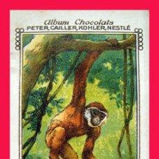 Libros de segunda mano: ALBUM 1928 NESTLE MON ALBUM CON 1056 CROMOS ROJO AZUL. ANIMALES, PLANTAS, EL HOMBRE. Lote 57090138