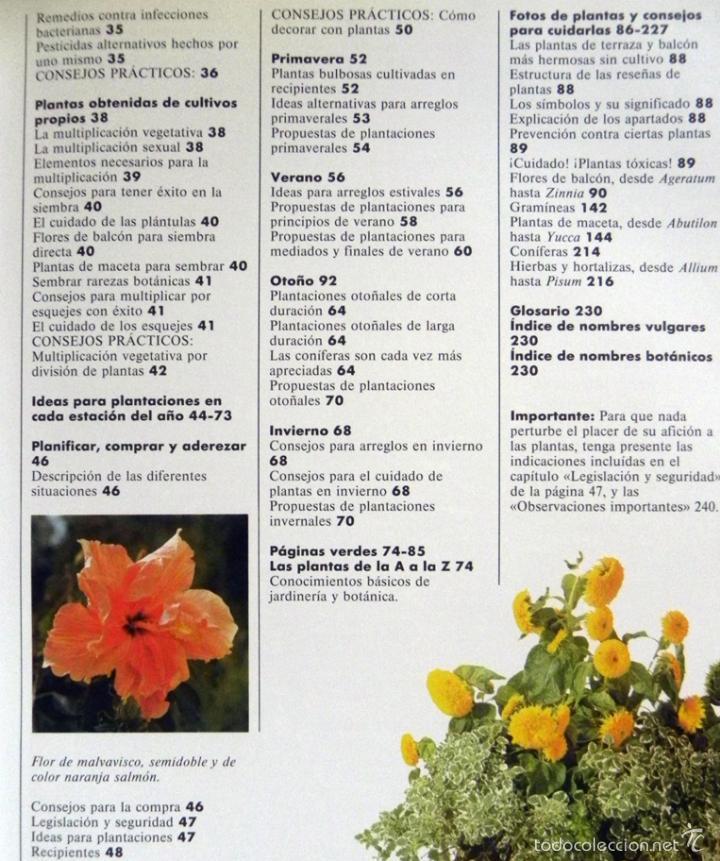 El Gran Libro De Plantas De Terraza Y Balcón Halina Heitz Guía Planta Consejos Cuidados Decoración