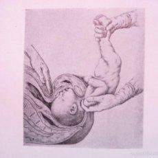 Libros de segunda mano: COMPENDIO DE CLINICA OBSTETRICA. MANUEL LUIS PEREZ.1949. 1 ED. . FIR., NUM. 34 EDIT LOPEZ ETCHEGOVE. Lote 57650034