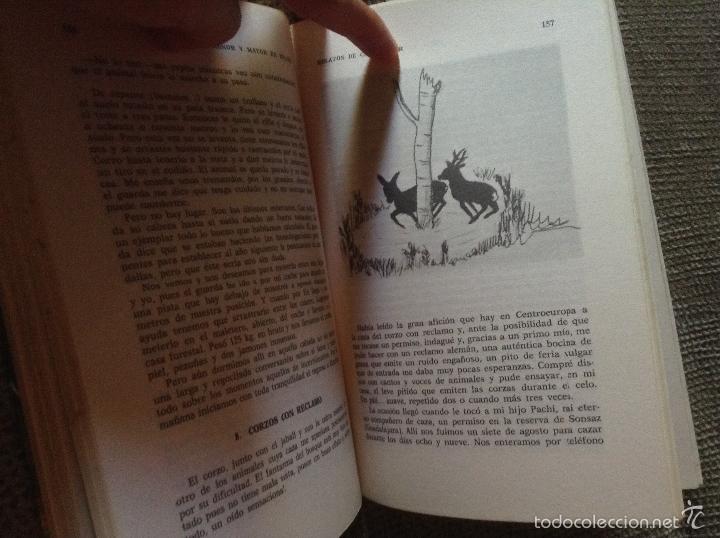 Libros de segunda mano: CAZAS MENOR Y MAYOR EN ESPAÑA FRANCISCO JOSE RUEDA CASSINELLO - Foto 3 - 57816002