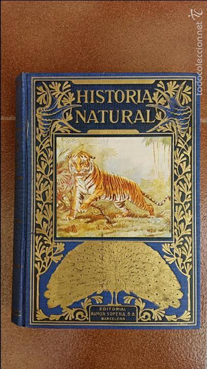 HISTORIA NATURAL. ANGEL CABRERA. EDIT RAMON SOPENA (Libros de Segunda Mano - Historia - Otros)