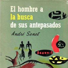 Libros de segunda mano: ANDRÉ SENET : EL HOMBRE A LA BUSCA DE SUS ANTEPASADOS (CARALT, 1962) PALEONTOLOGÍA - MUY ILUSTRADO. Lote 58365259