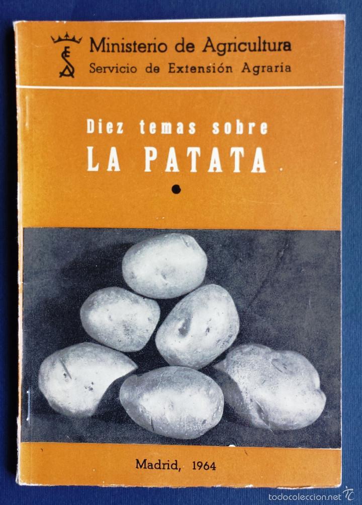 DIEZ TEMAS SOBRE LA PATATA MINISTERIO AGRICULTURA SERVICIO EXTENSIÓN AGRARIA MADRID 1964 (Libros de Segunda Mano - Ciencias, Manuales y Oficios - Otros)