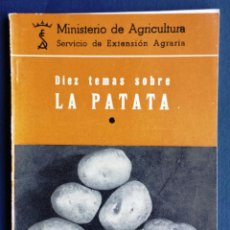 Livres d'occasion: DIEZ TEMAS SOBRE LA PATATA MINISTERIO AGRICULTURA SERVICIO EXTENSIÓN AGRARIA MADRID 1964. Lote 59721255