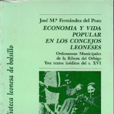 Libros de segunda mano: ECONOMÍA Y VIDA POPULAR EN LOS CONCEJOS LEONESES (FDEZ. DEL POZO 1988) RETRACTILADO. Lote 60435443