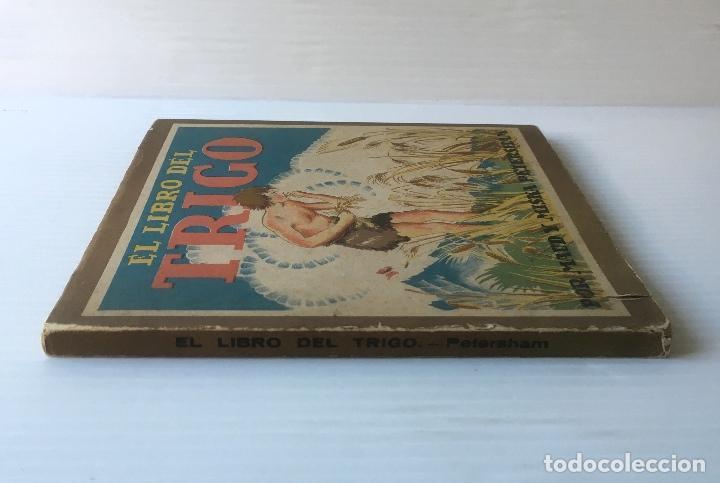 Libros de segunda mano: EL LIBRO DEL TRIGO. MAUD Y MISKA PETERSHAM. EDITORIAL JUVENTUD. CUENTO ILUSTRADO. - Foto 2 - 62194176