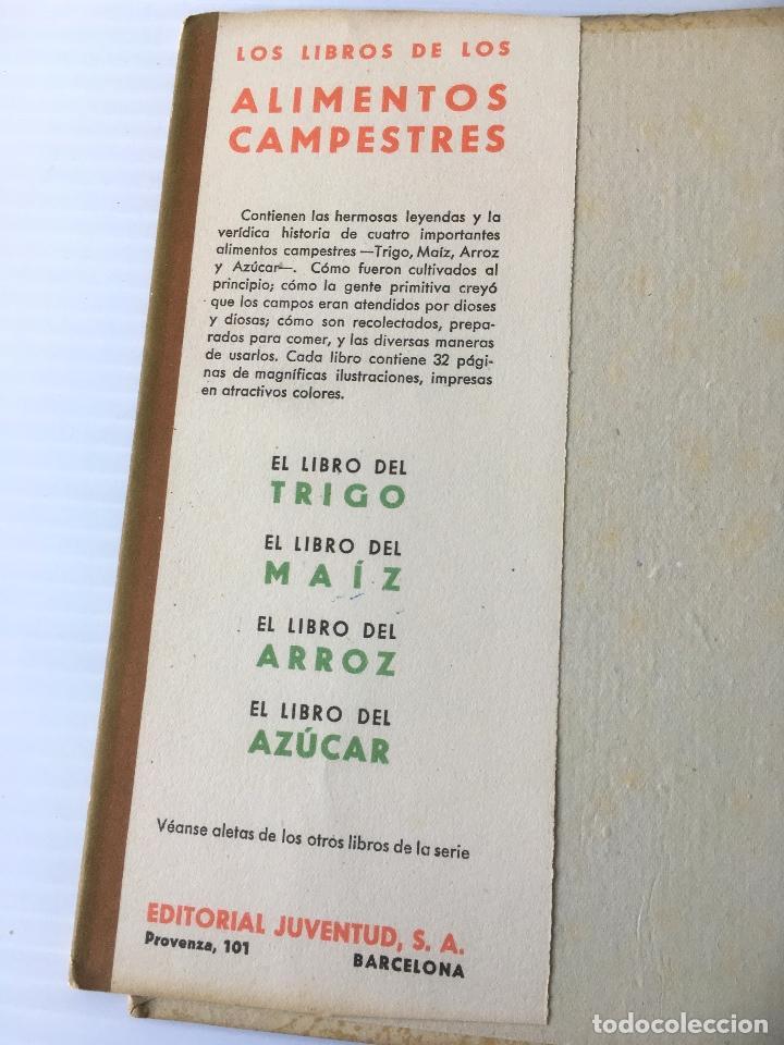 Libros de segunda mano: EL LIBRO DEL TRIGO. MAUD Y MISKA PETERSHAM. EDITORIAL JUVENTUD. CUENTO ILUSTRADO. - Foto 3 - 62194176