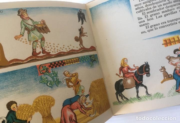 Libros de segunda mano: EL LIBRO DEL TRIGO. MAUD Y MISKA PETERSHAM. EDITORIAL JUVENTUD. CUENTO ILUSTRADO. - Foto 5 - 62194176