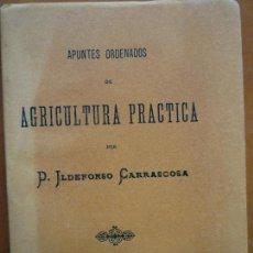 Libros de segunda mano: AGRICULTURA PRÁCTICA POR ILDEFONSO CARRASCOSA-COLECCIÓN FASCIMIL 1993-. Lote 147126433