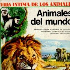Libros de segunda mano: VIDA INTIMA DE LOS ANIMALES DEL MUNDO (1975). Lote 82159210