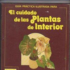 Libros de segunda mano: EL CUIDADO DE LAS PLANTAS DE INTERIOR, GUIA PRACTICA - EDITORIAL BLUME 1982. Lote 63709479