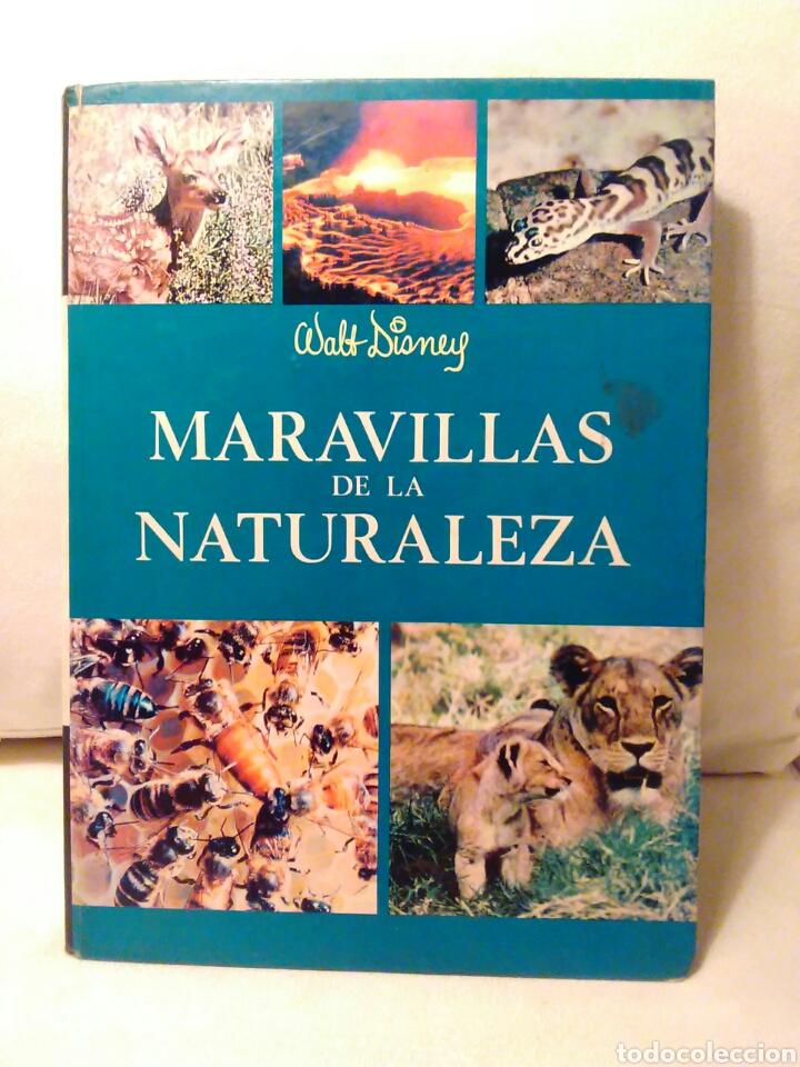 MARAVILLAS DE LA NATURALEZA WALT DISNEY EDICIONES GAISA S.L. (Libros de Segunda Mano - Literatura Infantil y Juvenil - Otros)